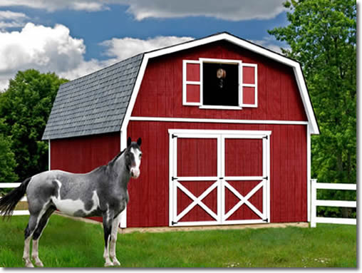 Roanoke 16 Building Barn Kit