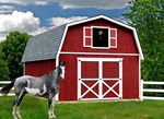 Wooden Barn Kit